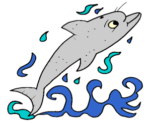 Colored Dolphin Illustration | Photos and Images | Animals
