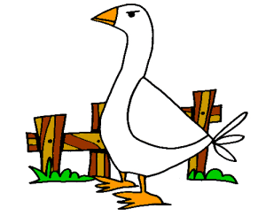 Colored Goose Illustration   Photos and Images   Animals