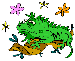 Colored Iguana Illustration | Photos and Images | Animals