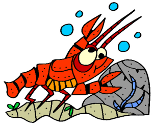 Colored Lobster Illustration | Photos and Images | Animals