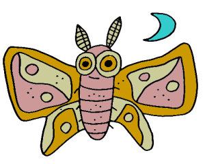 Colored Moth Illustration | Photos and Images | Animals