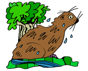 Colored Otter Illustration | Photos and Images | Animals