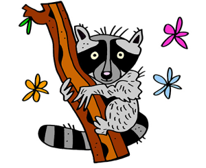 Colored Raccoon Illustration | Photos and Images | Animals