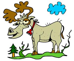 colored reindeer illustration