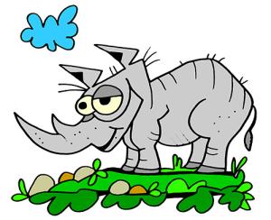 colored rhinoceros illustration