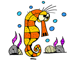 colored seahorse illustration