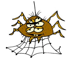 colored spider illustration