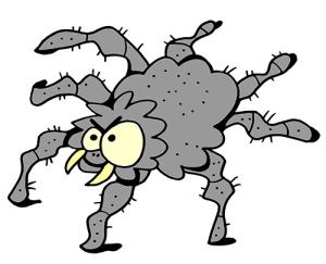 colored tarantula illustration