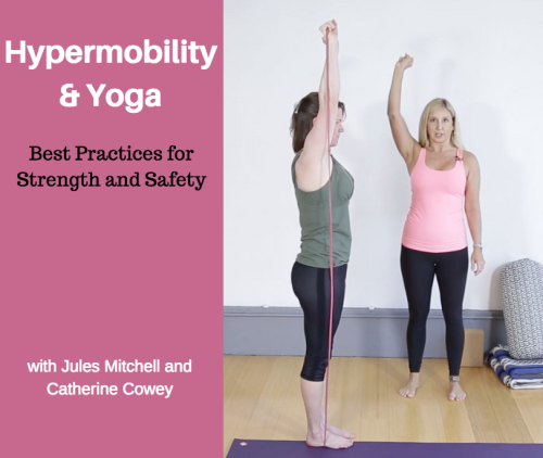 First Additional product image for - Hypermobility and Yoga