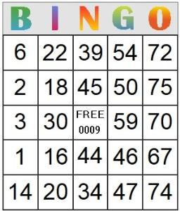 bingo card 9