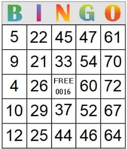 bingo card 16