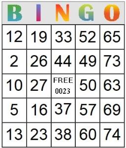 bingo card 23
