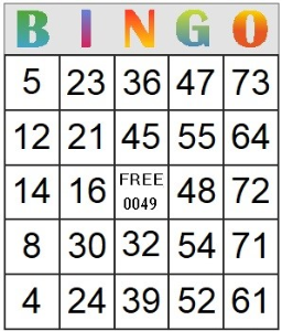 bingo card 49