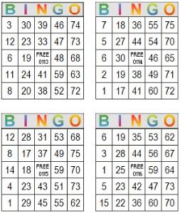 Bingo Multi Card 113-116 | Photos and Images | Entertainment