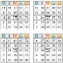 Bingo Multi Card 129-132 | Photos and Images | Entertainment