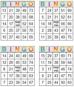 bingo multi card 145-148