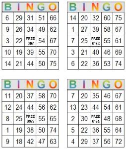 bingo multi card 161-164