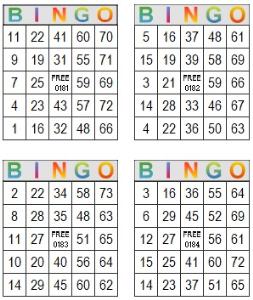 Bingo Multi Card 181-184 | Photos and Images | Entertainment