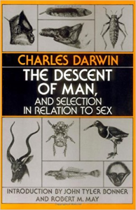 The Descent of Man and Selection in Relation to Sex | eBooks | Classics