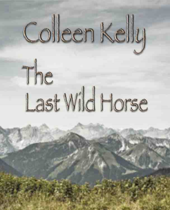 First Additional product image for - The Last Wild Horse: A Whistle-blowing 'tell-all' novel by Colleen Kelly