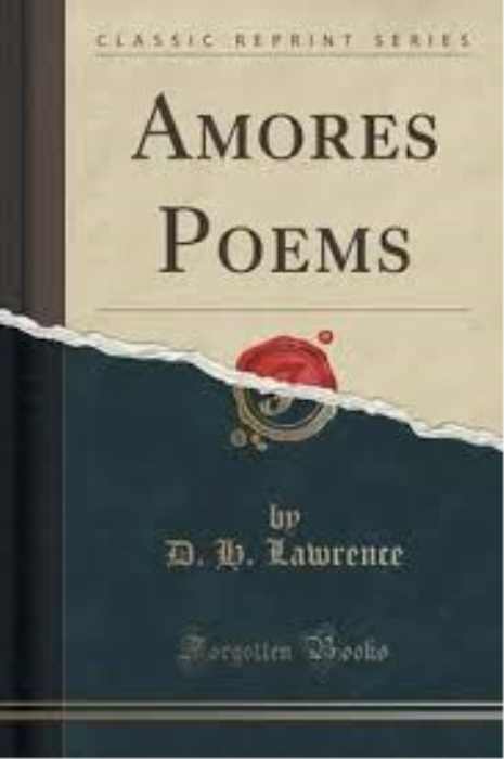 First Additional product image for - Amores Poems