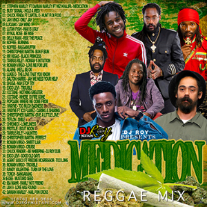 dj roy medication reggae mix 2018