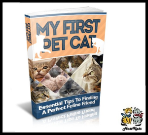 My First Pet Cat | eBooks | Reference