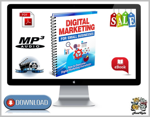 First Additional product image for - Digital Marketing For Small Businesses