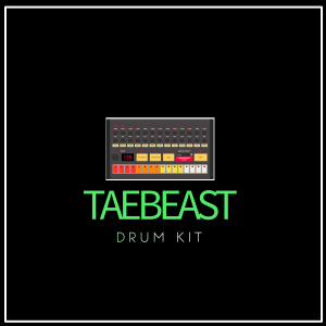 taebeast drum kit