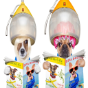 opening a grooming salon   eBooks   Pets