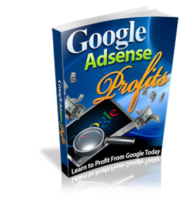 Google AdSense Profit | eBooks | Technical
