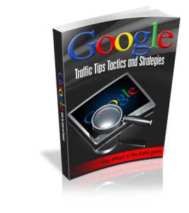 google traffic tips tactics and strategies