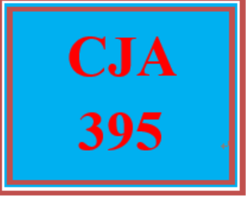 First Additional product image for - CJA 395 Week 5 Future Considerations in Criminal Justice Presentation