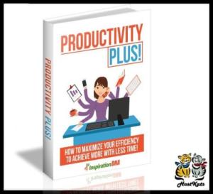 productivity plus