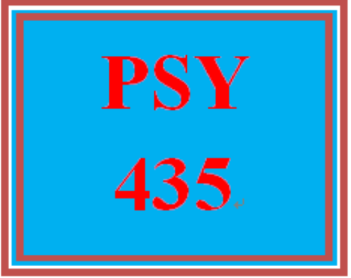 First Additional product image for - PSY 435 Week 5 CRM Project