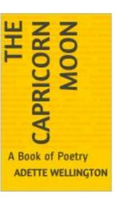 the capricorn moon