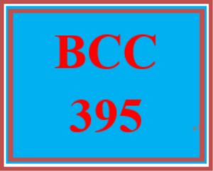 BCC 395 Week 2 Operational Components Paper – Week Two Team Assignment | eBooks | Education