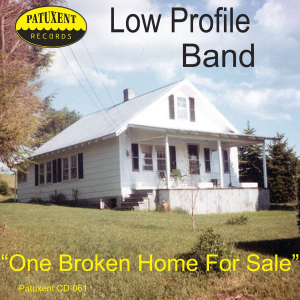 patuxent cd-061 low profile band - one broken home for sale