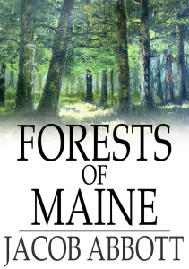 forests of maine