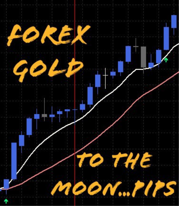 First Additional product image for - Forex Gold Indicator