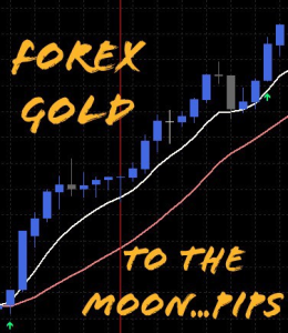 forex gold indicator