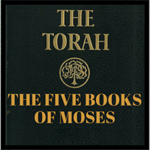 bibles series 5 book of moses