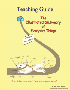 teaching guide for the illustrated dictionary