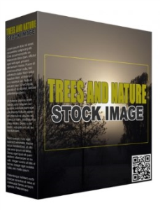 trees and nature stock images (royalty-free)