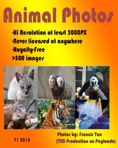 royalty free rf animal photos (new!-never licensed before)