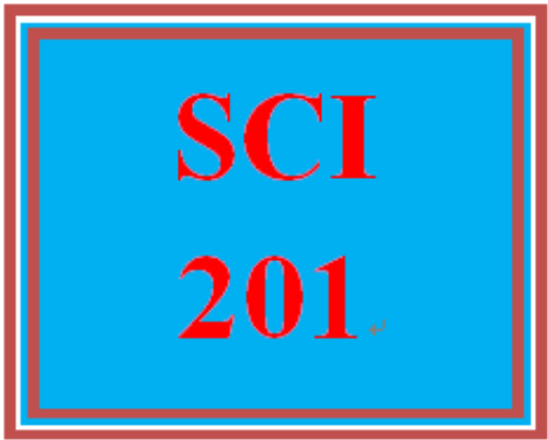 First Additional product image for - SCI 201 Week 1 Holistic Nursing, Ch. 1