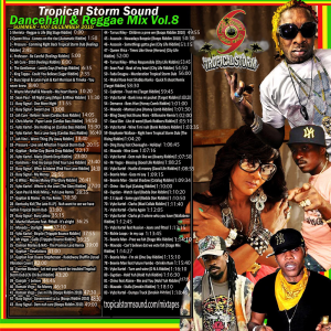 tropical storm soundsystem intl reggae street mix 8 (digital) 2010