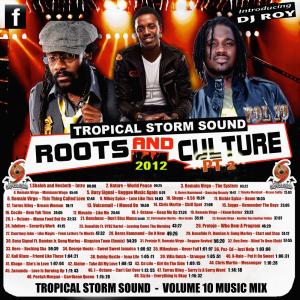 tropical storm soundsystem intl reggae street demo 10 (digital) 2012