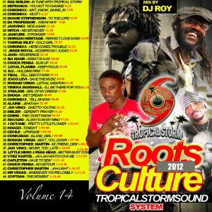 tropical storm soundsystem intl reggae street demo 14 (digital) 2012-2013