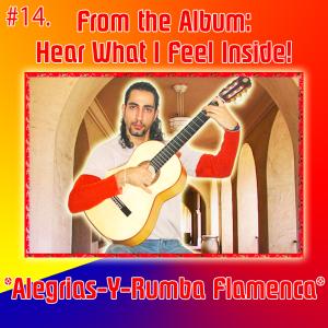 14. alegrias-y-rumba flamenca